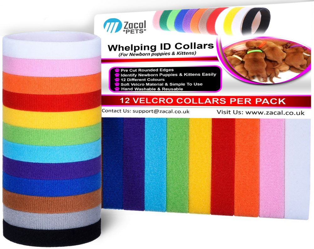 Whelping Collars