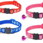 Paw Print Cat Collars – Red, Blue, Rose & Rose (Pack of 4)