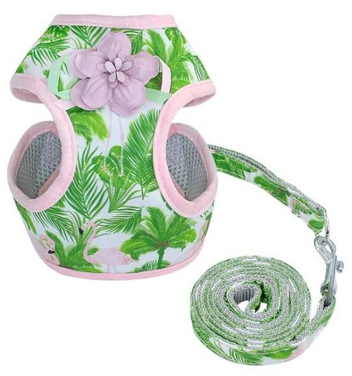 Cat Harness – Green Floral