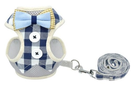 Cat Harness – Blue/White Chequered with...