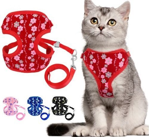 Cat Harness – Black with Flower Print