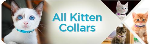 All Kitten Collars