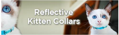 Reflective Kitten Collars