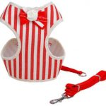 Cat Harness – Red & White Stripe with Bow