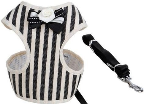 Cat Harness – Navy Blue & White Stripe with Bow