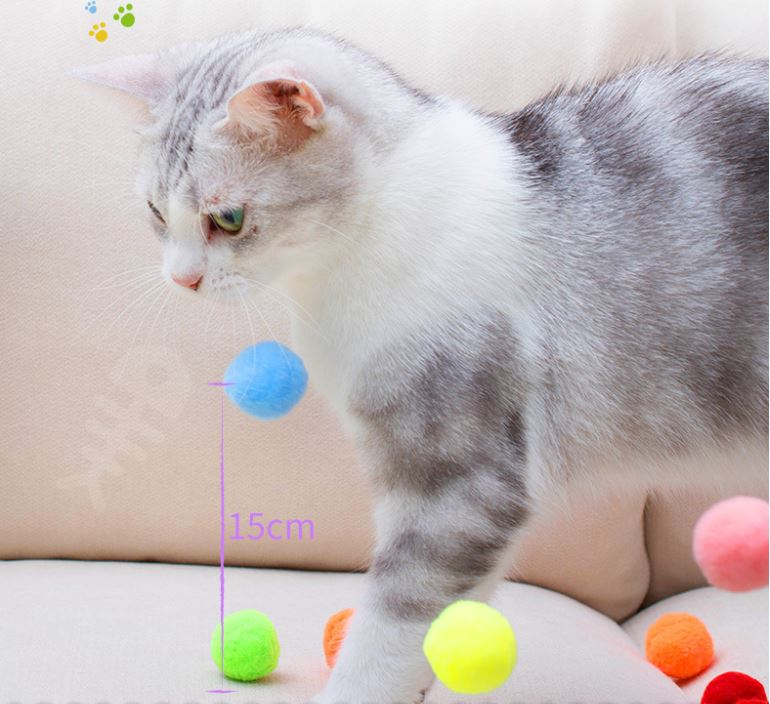 Soft Plush Cat Toy – Bouncy Balls, Bite Resistant