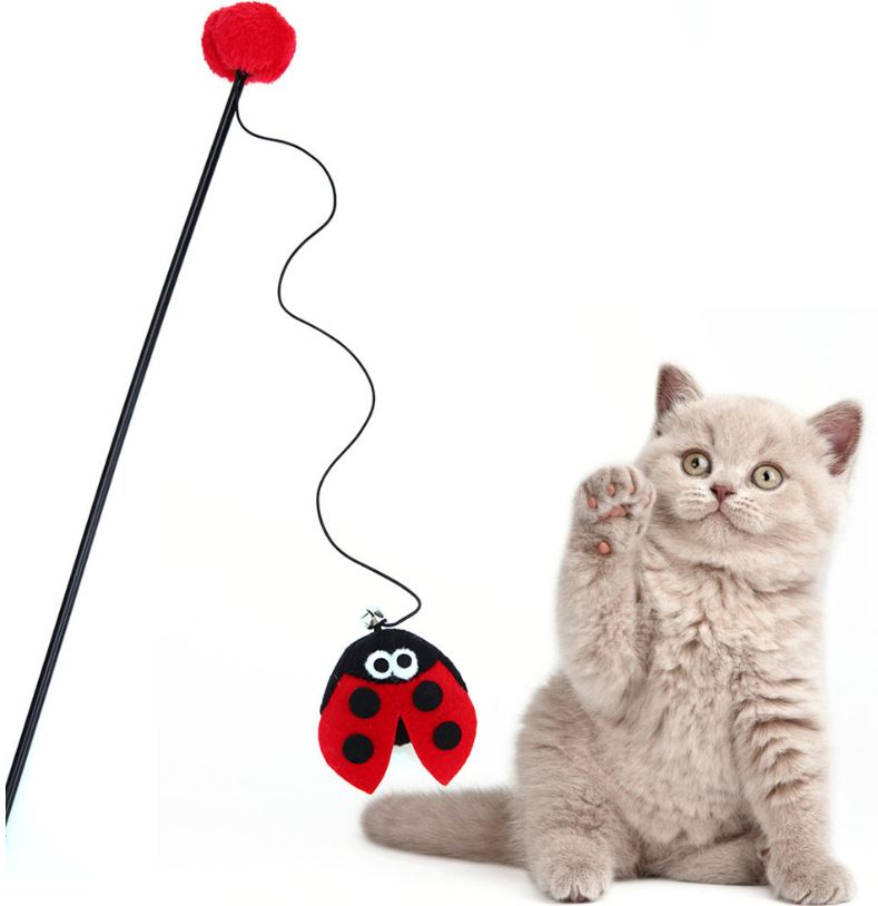Red Ladybird Cat Toy – Cat Wands & Teasers