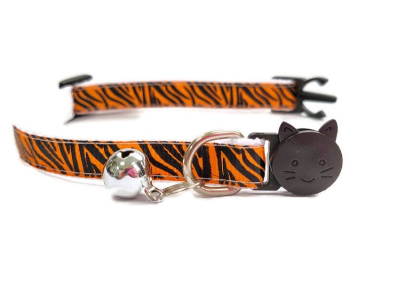 Orange Zebra Kitten Collar