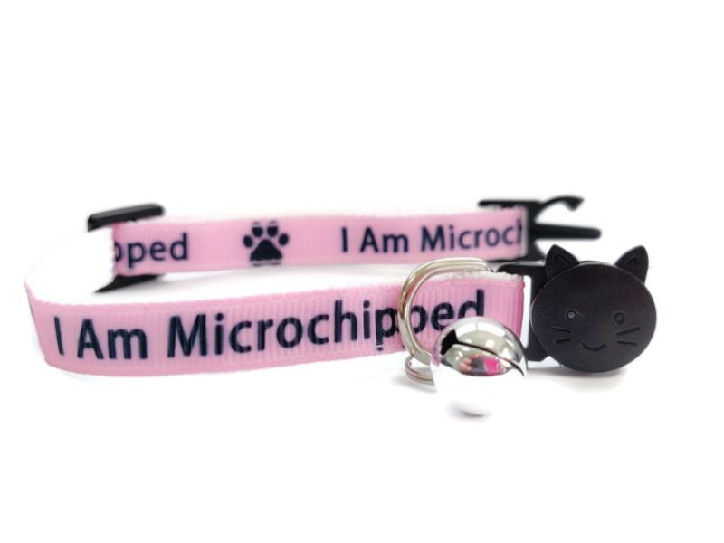 I Am Microchipped Cat Collar (Pink)