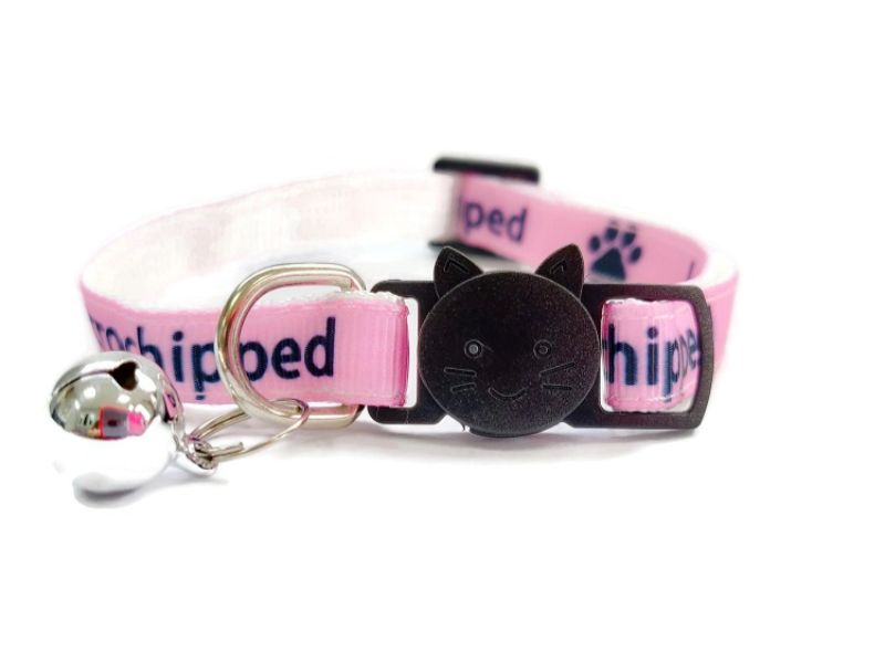 'I Am Microchipped' (Pink) Cat Collar
