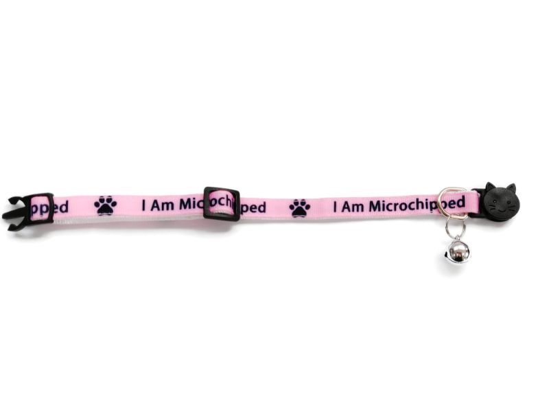 'I Am Microchipped' (Pink) Cat Collar1
