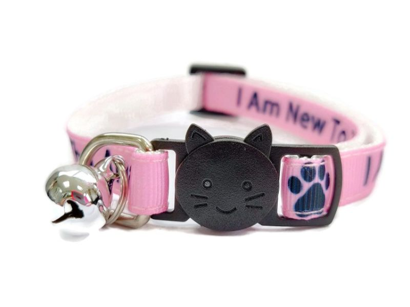 'I Am New To The Area' Cat Collar (Pink)