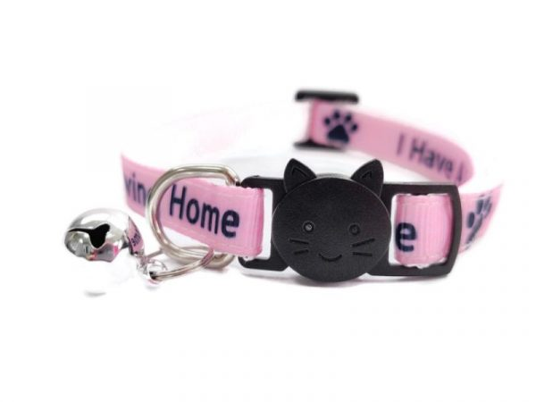 'I Have A loving Home' (Pink) Cat Collar