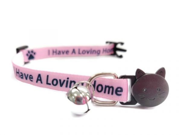 'I Have A loving Home' (Pink) Kitten Collar