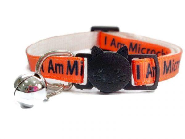 'I Am Microchipped' (Orange) Cat Collar
