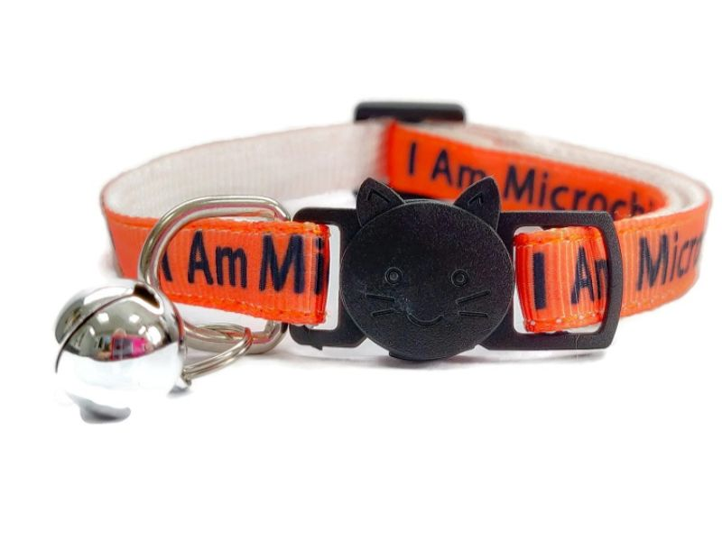 'I Am Microchipped' Cat Collar (Orange)