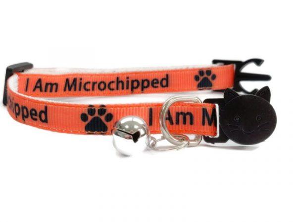 'I Am Microchipped' (Orange) Kitten Collar