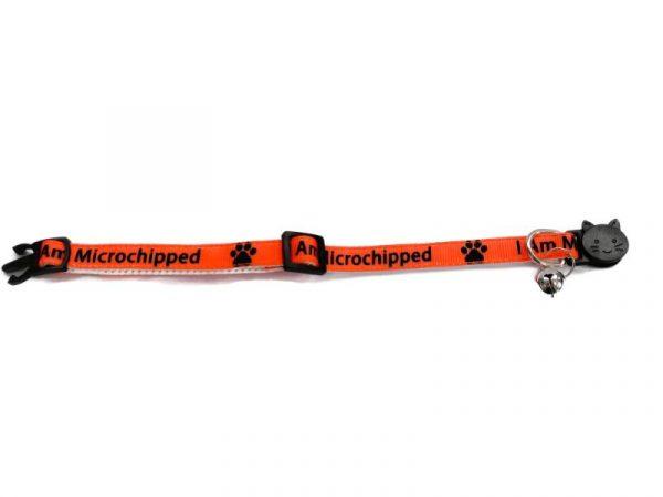 'I Am Microchipped' (Orange) Cat Collar1