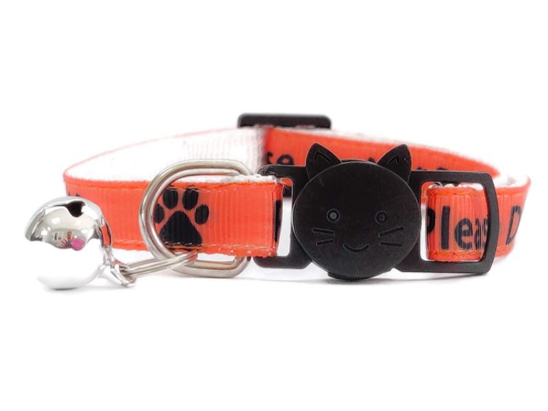'Please Do Not Feed Me' Cat Collar (Orange)