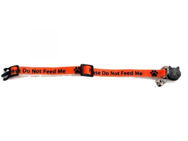 'Please Do Not Feed Me' (Orange) Cat Collar1