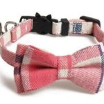 Luxury Pink, Beige and Blue Chequered Cat Collar