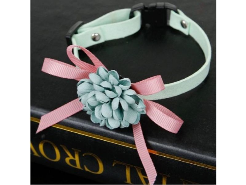 Luxury Cat Collar – Soft Velvet with Flower (Mint Green)