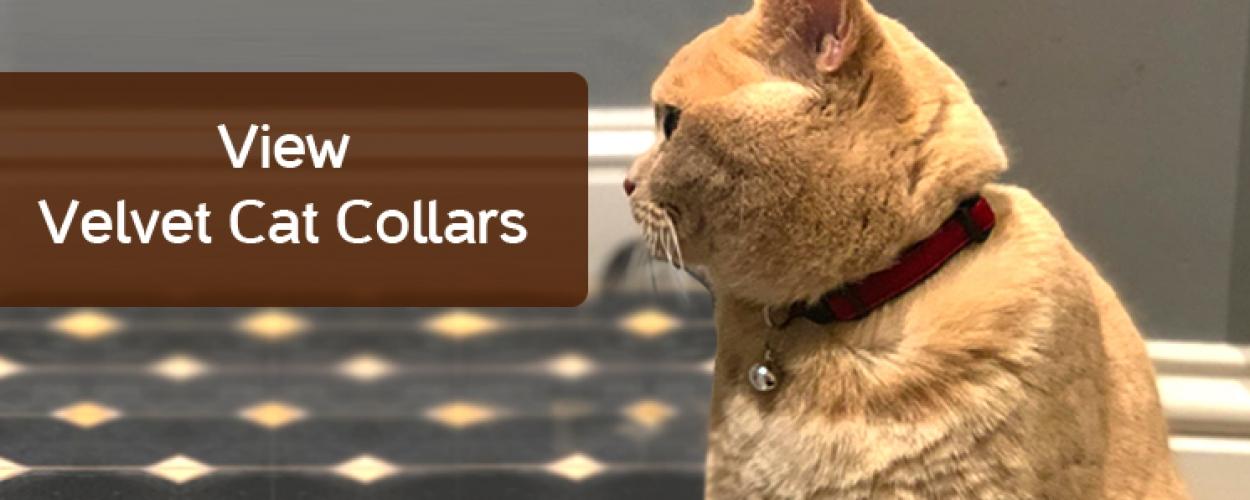 Velvet Cat Collars