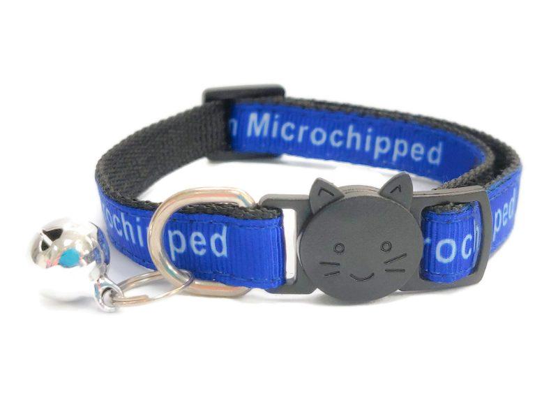 'I Am Microchipped' Cat Collar (Blue)